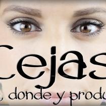 Cejas, como hacerlas, donde y productos que usar Silvia Quiros